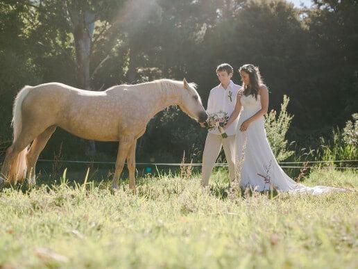 Newlyweds pose with horse